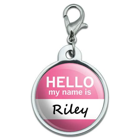 Riley Hello My Name Is Small Metal ID Pet Dog (Small Dog Tag)