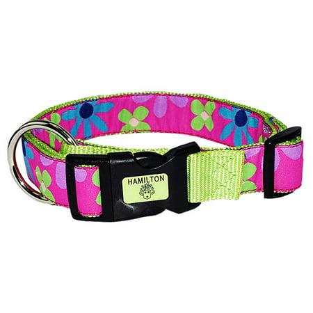 Premium Patterned Dog Collars - Hamilton 1