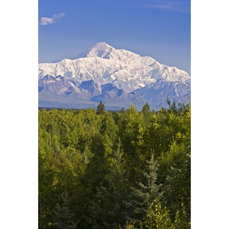 Southside View Of Mt Mckinley Summer Southcentral Alaska Canvas Art   Jeff Schultz  Design Pics  22 X 34