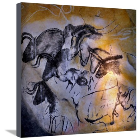 Painting in the Chauvet Cave, 32,000-30,000 Bc Ancient Animal Pictogram Art Stretched Canvas Print Wall