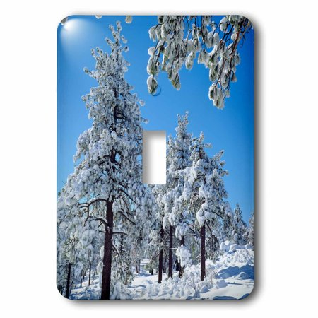 3dRose USA, California, San Diego. Winter trees in the Laguna Mountains., 2 Plug Outlet Cover