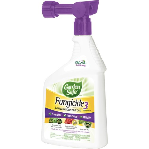 Garden Safe Fungicide Three-In-One Concentrate, 28-Ounce