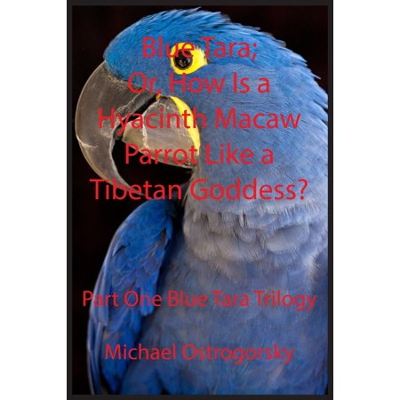 Princess Tara Chronicles: Blue Tara: Or, How Is a Hyacinth Macaw Parrot Like a Tibetan Goddess? (Paperback)