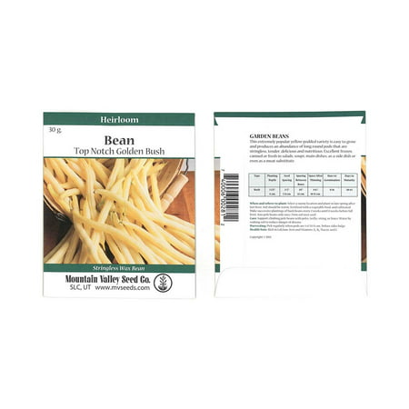Top Notch Golden Wax Bush Beans - 30 Gram Packet - Non-GMO, Heirloom - Vegetable Garden Seeds - Gold
