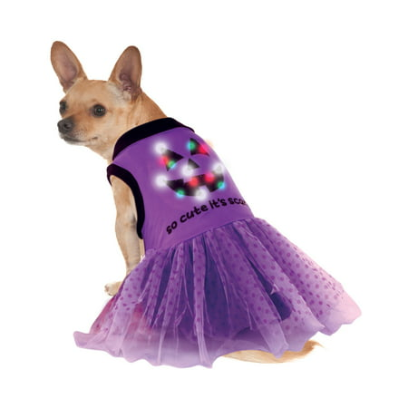 Led Light Up Purple Black Jack O Lantern Pet Dog Cat Halloween Dress (Black Dog Halloween)