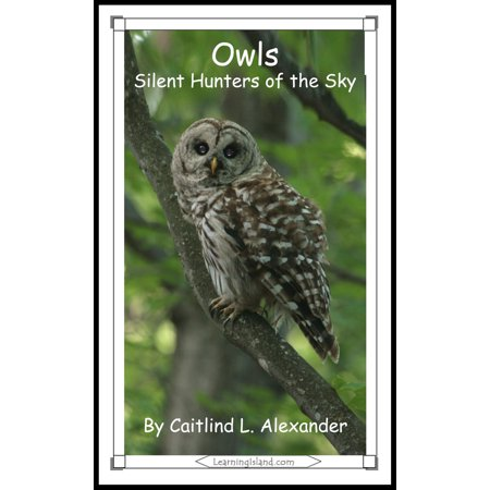 Owls: Silent Hunters of the Sky - eBook
