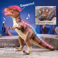 Boys Remote Control Walking T-Rex Dinosaur Lights Sound, Easy Push Button Controller Kids