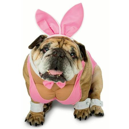 Zelda Hunny Bunny Dog Costume - Dog Bunny Costumes