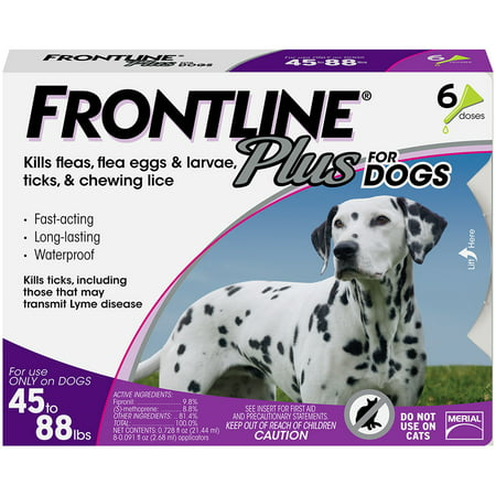 FRONTLINE Plus for Large Dogs (45-88 lbs) Flea and Tick Treatment, 6 Doses - Frontline Plus Dog Flea Control