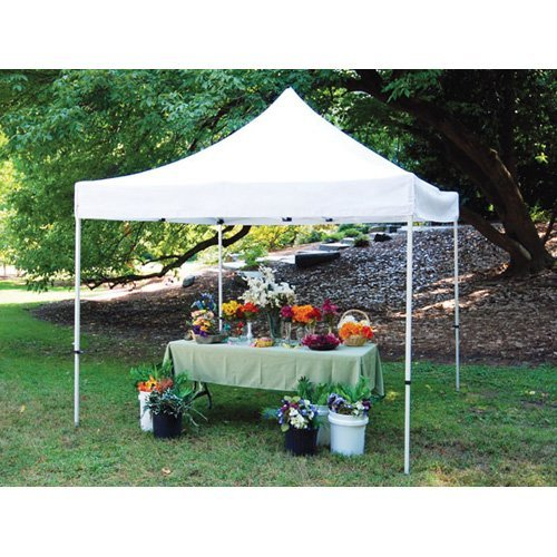 King Canopy 10 x 10 ft. Festival Canopy
