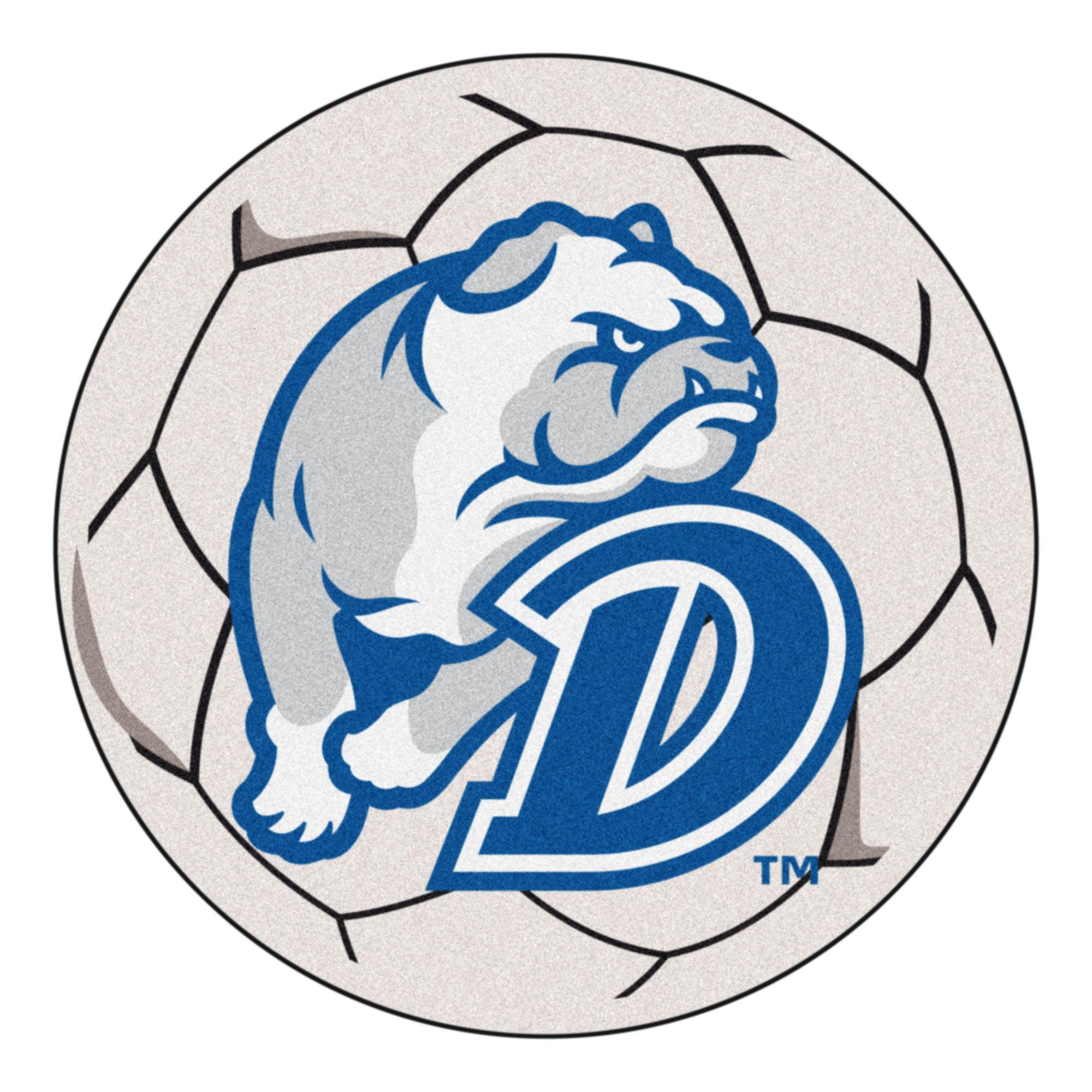 """Drake Soccer Ball 27"""" diameter"""