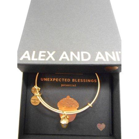 UNEXPECTED BLESSINGS II Expandable Bracelet Rafaelian Gold NWTBC Cc Skye Gold Buckle Bracelet
