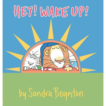 Hey! Wake Up! - Boardbook (Richard Dawkins Waking Up In The Universe)