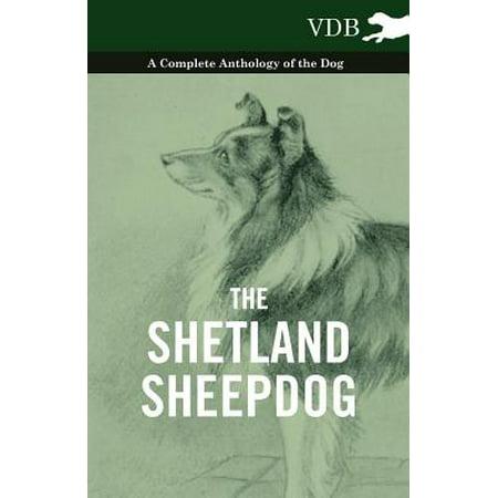 The Shetland Sheepdog - A Complete Anthology of the Dog - eBook