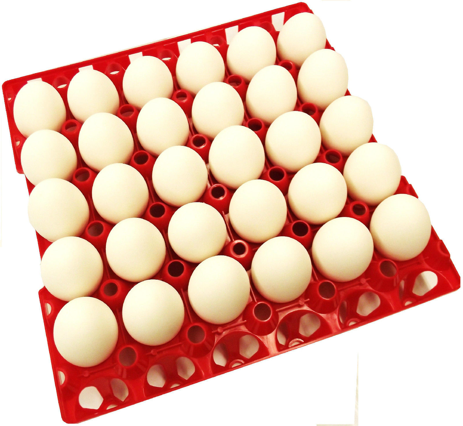 48 RITE FARM PRODUCTS 30 EGG POLY CHICKEN TRAYS SHIPPING CARTON POULTRY FLAT