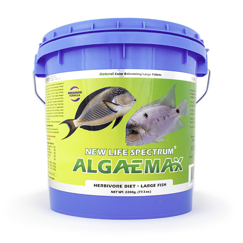 New Life Spectrum AlgaeMax Fish Food Pellets for Large Fish, 2.2 kg