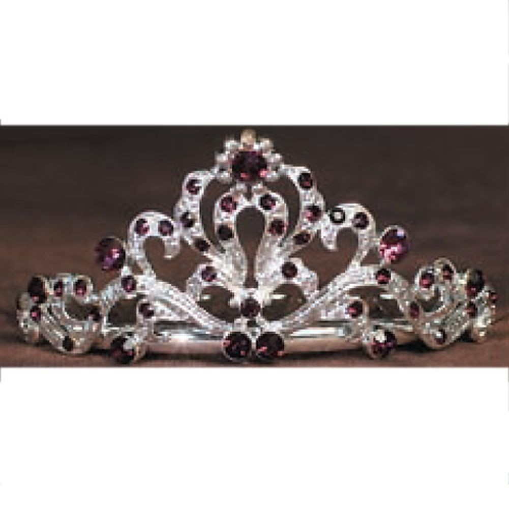 Angels Garment Little Girls Silver Amethyst Rhinestone Fancy Tiara
