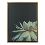 Kate and Laurel Sylvie Framed Canvas Wall Art - Succulent Plant, Botanical Green with Black Background, 18x24, Gold