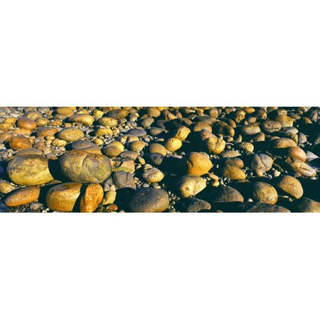 Boulders on the beach Calumet Park Beach La Jolla San Diego San Diego County California USA Canvas Art - Panoramic Images (27 x