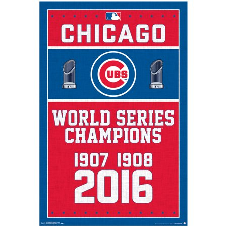 Chicago Cubs World Series Champions 22