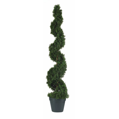 4' Cedar Spiral Silk Tree