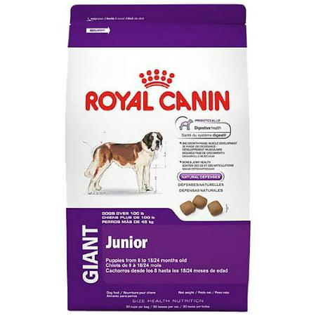 royal canin size health nutrition giant junior dry dog food. Black Bedroom Furniture Sets. Home Design Ideas