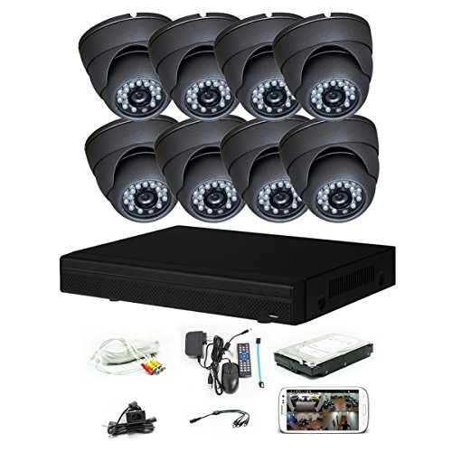 iPower Security SCCVIC0003-1T 8 Channel 1TB HDD HD-CVI HDCVI 1080P DVR Security Surveillance System with 8 Dome Fixed Le