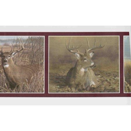 877773 Deer Wallpaper Border