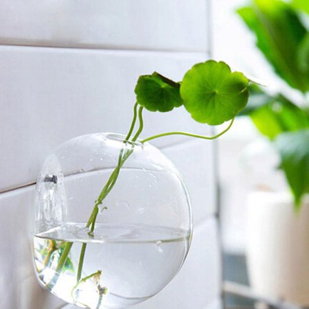 Hanging Flower Pot Glass Ball Vase Terrarium Wall Fish Tank Aquarium Container Home Decor diameter 10cm](Hanging Glass Terrarium Containers)