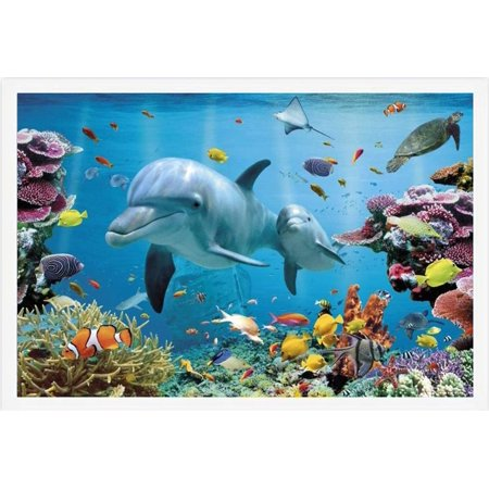 Buyartforless FRAMED Tropical Reef and Dolphins 36x24 Ocean Tropical Coastal Art Print Poster WHITE FRAME