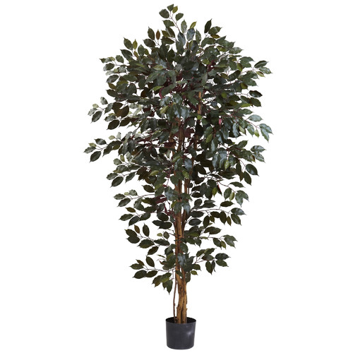 Nearly Natural Capensia Ficus Tree in Pot