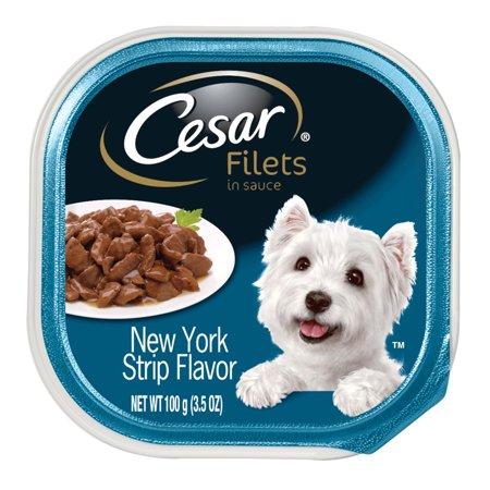 (12 Pack) CESAR GOURMET FILETS Wet Dog Food New York Strip Flavor, 3.5 oz. Tray