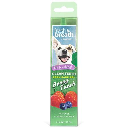 Tropiclean Fresh Mint Foam (Fresh Breath by TropiClean Clean Teeth Oral Care Gel - Berry Fresh, 2 Oz )
