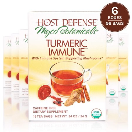 Host Defense - MycoBotanicals Turmeric Immune Tea, Superfood Mushroom and Herbal Support for Immunity and Digestion, Reishi, Ginger Root, Black Pepper, 96 Tea Bags (6 Pack) (My Community Host Defense)