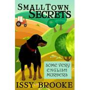 Small Town Secrets - eBook