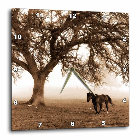 3dRose Western Sepia Toned Horse on a Ranch with an Oak Tree - Wall Clock, 15 by 15-inch Oak Tree Ranch