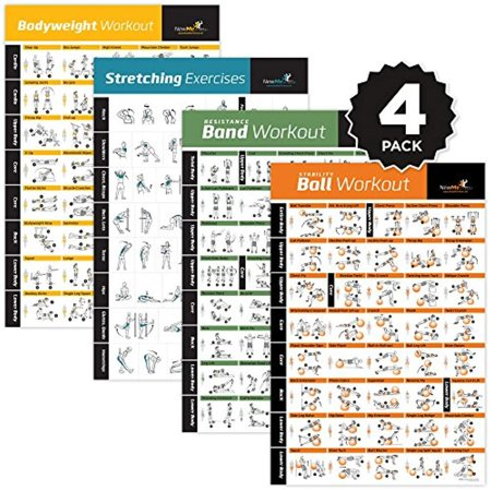 4-PACK LAMINATED HOME GYM EXERCISE POSTERS (BODYWEIGHT, STRETCHING,  RESISTANCE, STABILITY BALL) Build muscle, tone and strengthen your entire  body