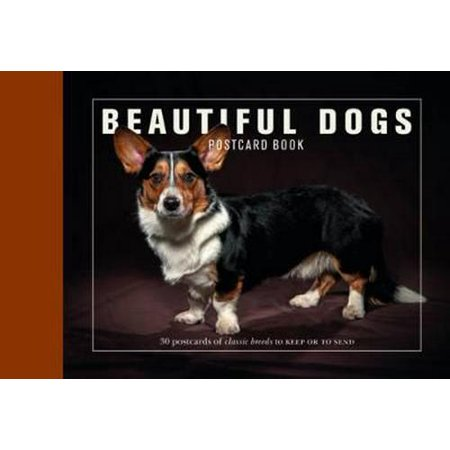 30% Post Consumer Material - Beautiful Dogs Postcard Book: 30 Postcards of Classic Breeds to Keep or to Send (Card Book)
