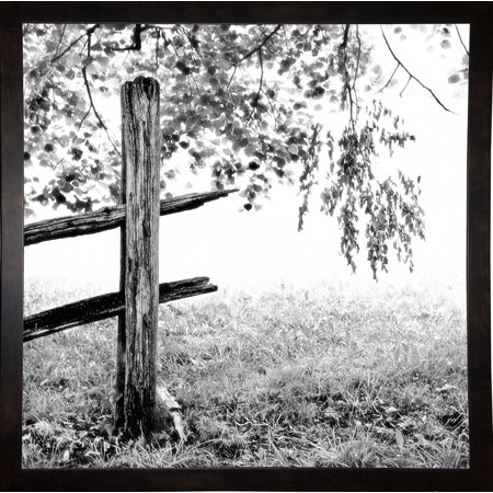 "End Of The Fence-HARTRE68991 Print 18.25""x18.25"" by Harold Silverman - Trees & Old Fences in a Affordable Black Medium"