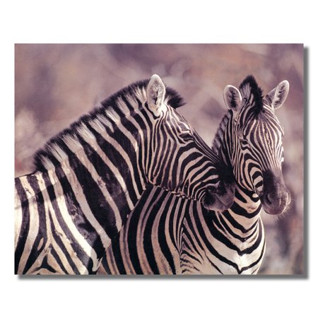 Wild African Safari Striped Zebra Picture Art Print](Wild Zebra)