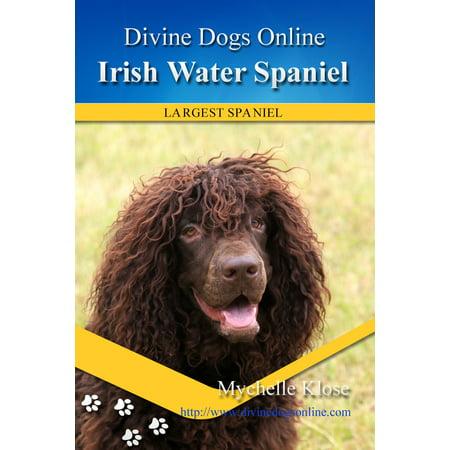 Irish Water Spaniel - eBook (Irish Water Spaniel Puppies)