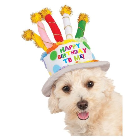 Birthday Cake Hat (Halloween Birthday Cake Hat Pet)