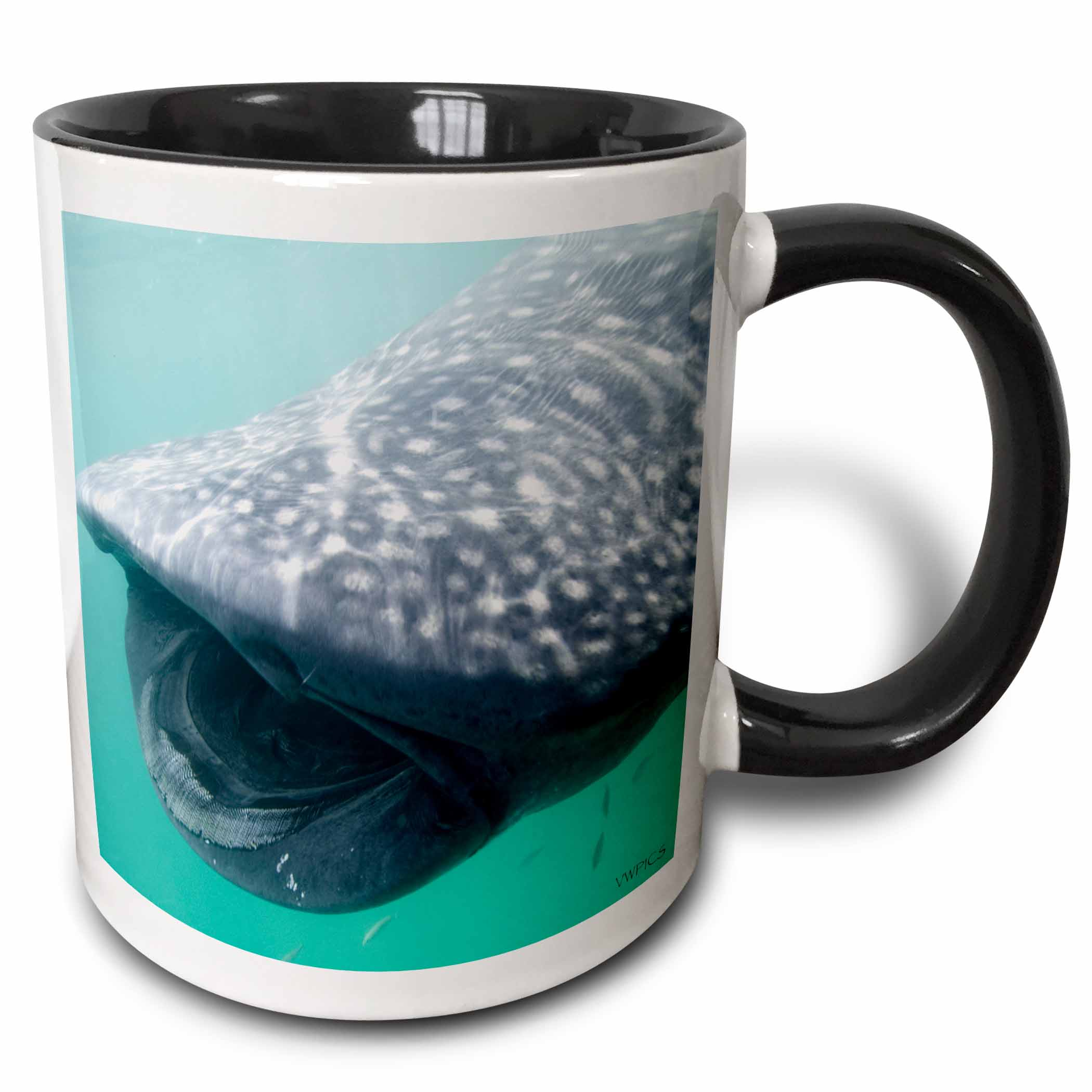 3dRose Whale Shark (Rhincodon typus) - showing its many rows of tiny teeth. Holbox Island, Mexico - Two Tone Black Mug, 11-ounce