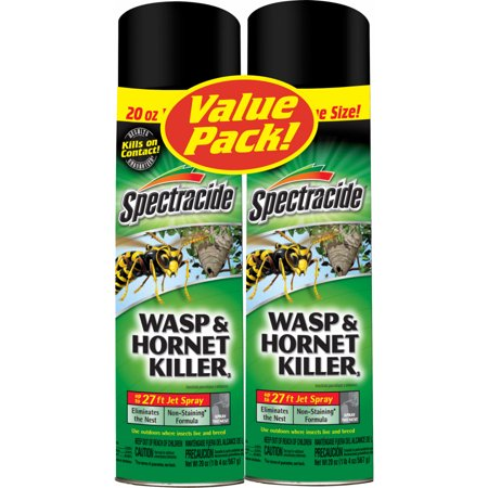 spectracide wasp and hornet killer spray twin pack 20 ounce