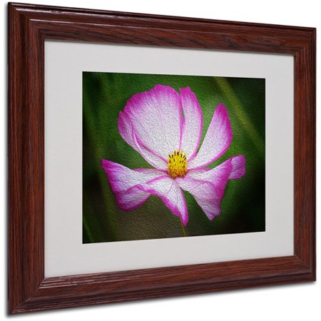 Trademark Fine Art Valentines Day Matted Framed Art by Philippe Sainte-Laudy