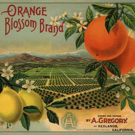 Orange Blossom Brand - Redlands, California - Citrus Crate Label Fruit Produce Advertisement Print Wall Art By Lantern Press