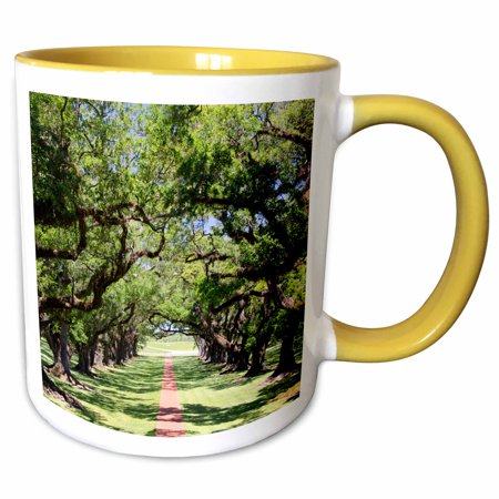 3dRose Louisiana, New Orleans, Vacherie. Oak Alley Plantation, old oak trees. - Two Tone Yellow Mug,