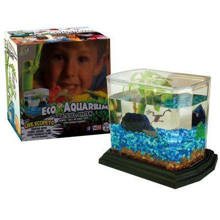 Jewel Ecoaquarium All In One Dry Goods Kit With Coupon For Living Components  Shipped Separately