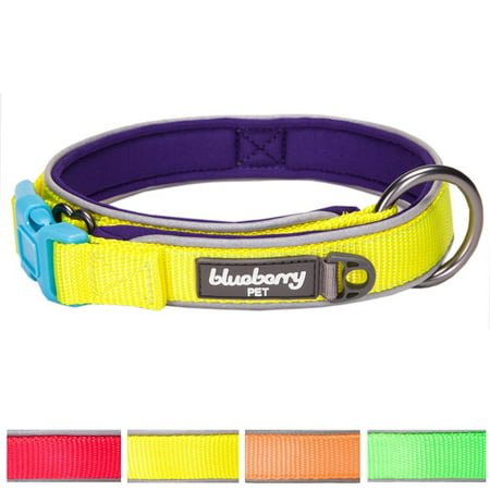 Blueberry Pet Soft & Comfy Summer Hope 3M Reflective Padded Dog Collar with O-Ring, Fluorescent Yellow, Large, Neck 18