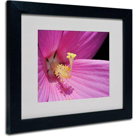 Hibiscus Framed (Trademark Fine Art
